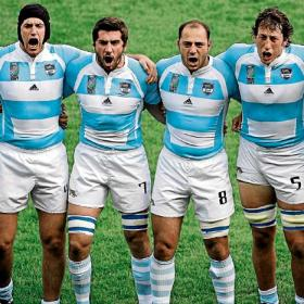 pumas rugby argentina